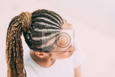 Bild the girl with the brown hair and the braids with kanekalon braided