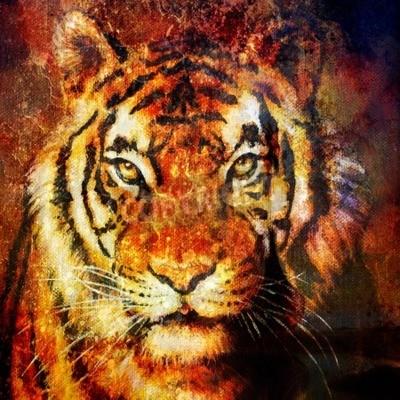 Bild Tiger Kopf, abstrakte Farbe Hintergrund, Computer-Collage, Augenkontakt
