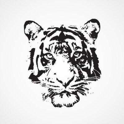 Bild tigre