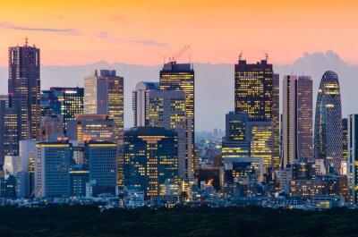Bild Tokyo Skyline in der Dämmerung