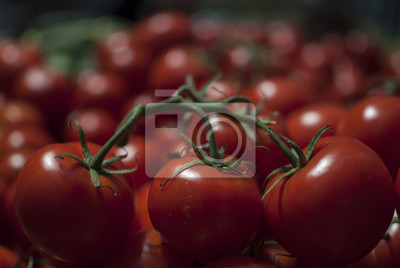 Bild Tomaten auf dem Markt