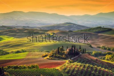 Bild Toskana-Landschaft bei Sonnenaufgang. Typisch für die Region toskanisches Bauernhaus, Hügel, Weinberg. Italien