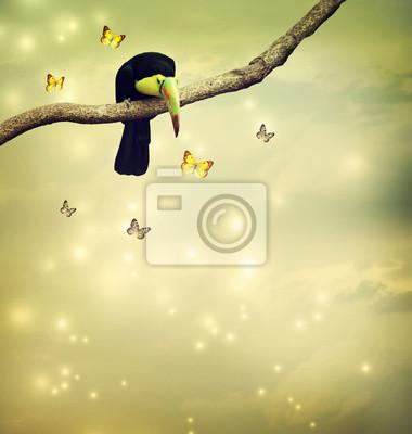 Toucan mit Schmetterlingen