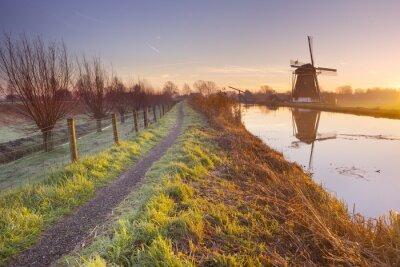 Bild Traditionelle niederländische Windmühle in den Niederlanden bei Sonnenaufgang