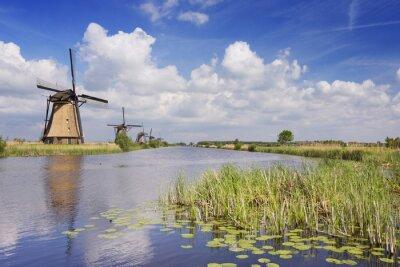 Bild Traditionelle niederländische Windmühlen an einem sonnigen Tag im Kinderdijk