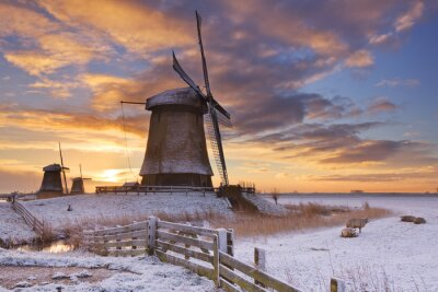 Bild Traditionelle niederländische Windmühlen im Winter bei Sonnenaufgang