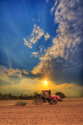 Bild Traktor auf dem Feld
