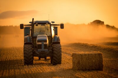 Bild Traktor Sonnenuntergang Ernte