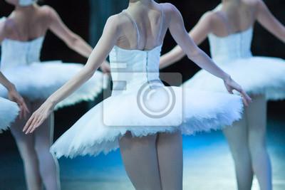 Traum, Tanz, dramatische Kunst Cocnept. wenige junge und anmutige Ballerinen im weißen Kleid wie in Federn winken ihre Hände, als wollten sie abschrecken und fliegen
