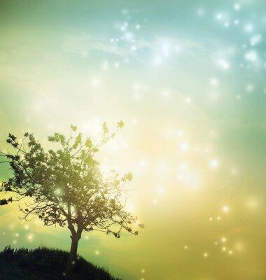 Bild Tree silhouette at twilight