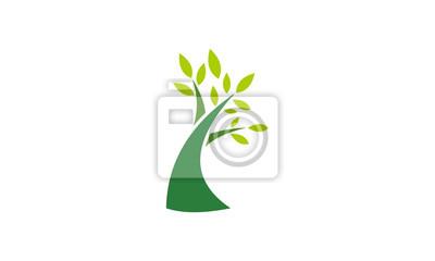 Bild tree with green leaf vector