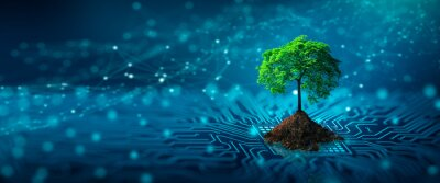 Bild Tree with soil growing on  the converging point of computer circuit board. Blue light and wireframe network background. Green Computing, Green Technology, Green IT, csr, and IT ethics Concept.