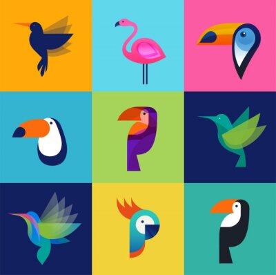 Bild Tropical birds - set of vector icons