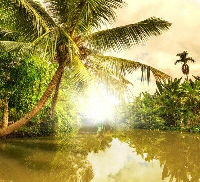 Bild Tropical Fluss