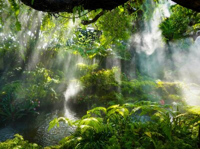 Bild Tropical jungle with river and sun  beam  and foggy in the garden