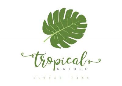 Bild Tropical Leaf Logo
