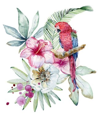 Bild Tropical watercolor illustration