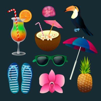 Bild Tropische Elemente Set: Cocktails, Blumen, Sonnenbrillen, Vogel, Ananas