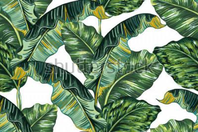 Bild Tropische Palmblätter, Musterhintergrund des nahtlosen Vektors des Dschungelblattes