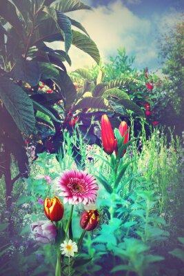 Bild Tropischer Garten im Sommer