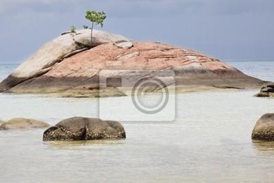 Tropischer Strand.