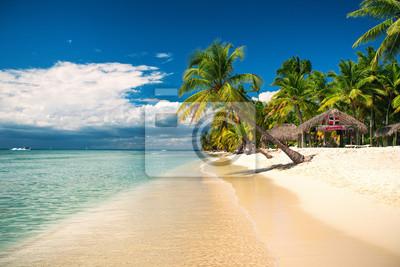 Tropischer Strand auf der Insel Saona, Dominikanische Republik