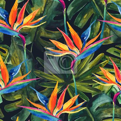 Bild Tropisches nahtloses Muster des Aquarells mit Vogel-von-Paradiesblume, monstera, Palmblatt.