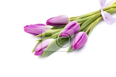 Bild Tulpen auf dem weißen Hintergrund.