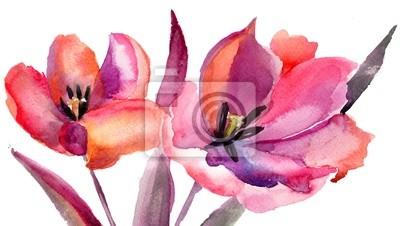 Tulpen Blumen, Aquarellmalerei