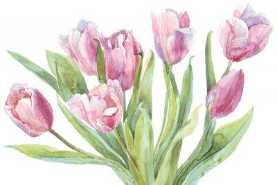 Bild Tulpen bouquet Aquarellabbildung