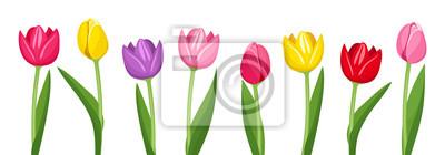 Bild Tulpen in verschiedenen Farben. Vektor-Illustration.