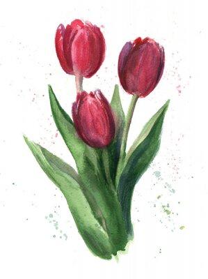 Bild Tulpen, Wasserfarbe