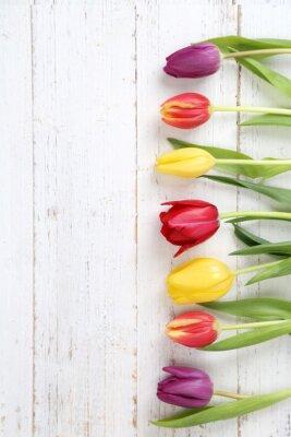 Bild Tulpenhintergrund