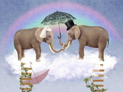 Bild Two elephants in love with umbrellas.