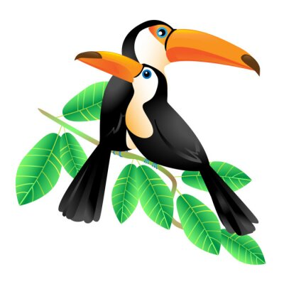 Bild Two Toucans Sitting on a Branch