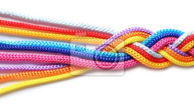 Bild Umsponnene bunte Seile auf weißem Hintergrund. Einheitskonzept