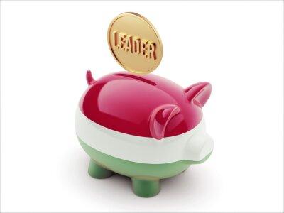 Ungarn-Piggy-Konzept