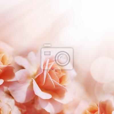 Unscharf Unschärfe Pastellblumenhintergrund.