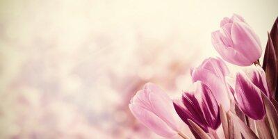 Bild Urlaub Jahrgang Floral Background