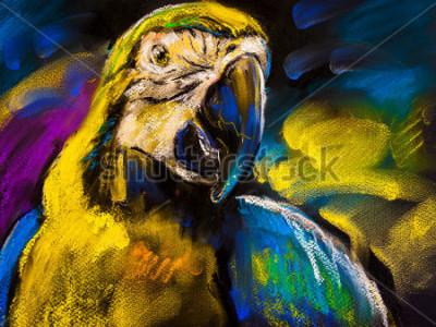 Bild Ursprüngliche Pastellmalerei auf Karton. Moderne Malerei eines schönen Papageis