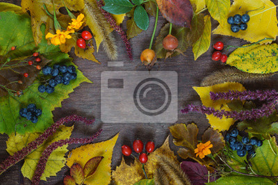 Bild utumn background of multicolored leaves and grapes on a wooden surface