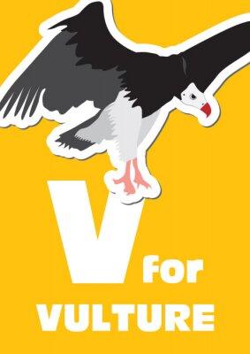 Bild V für die Geier, ein Tier-Alphabet für Kinder