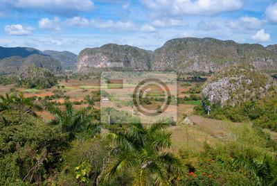 Vallée de Viñales, patrimoine mondial UNESCO, Kuba (2)