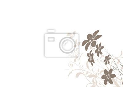 Bild vecteur série - Margerite - fleur vectoriel sur fond blanc