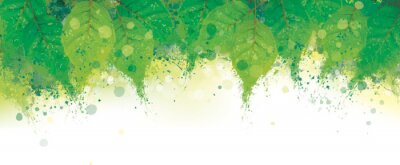 Bild Vector abstract green leaves border. Grungy nature background.