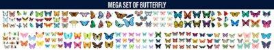 Bild Vector butterfly set, Butterfly Clipart, Monarch butterfly. Hand drawn vector illustration, Butterfly. Butterfly Set