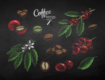 Bild Vector chalk drawn set of coffee illustrations