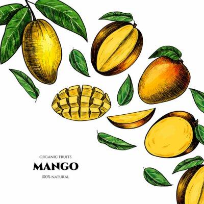 Bild Vector frame with mango. Hand drawn. Vintage style