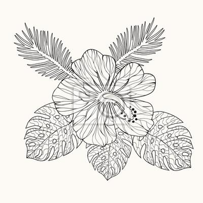 Vector hibiskus blume und blätter leinwandbilder • bilder aloha ...