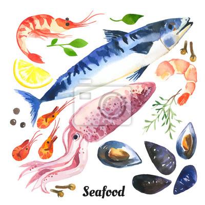 Bild Vector Illustration mit Aquarell Essen. Makrele. Aquarell Satz von Meeresfrüchten mit Forelle, Lachs und Muscheln mit der Hand auf einem weißen Hintergrund gezeichnet.